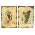 Wall Art 10 X 12 Burlap Pine 2 Assorted (12.50)