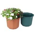 "Planter 9.5""x 8""h Decagon Shape 2 Colors #6043 No Punched Out Holes"