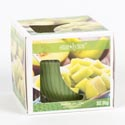 Candle Scented 3oz Window Boxed Sweet Melon Made In Usa