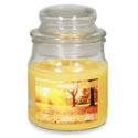 Candle Scented Apothecary Jar Autumn Air 3 Oz