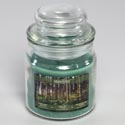 Candle Scented Northern Woods 3 Oz Apothecary Jar Starlytes