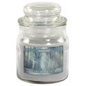 Candle Scented Enchanted Forest 3 Oz Apothecary Jar Starlytes