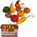 Harvest Pumpkin/gourd/corn 10ast Foam Plain/crackle/gltr 30pc Pdq Harv Ht