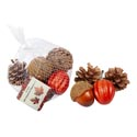 Harvest Gourd/pinecone 6pc Decor Mesh Bag/ht