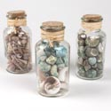 "Seashells Asst In Cork-topped Jar 3ast Approx 15-20 Oz/clr Lbl 6.75""h"