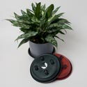 Rolling Plant Caddy 10in Round Plastic Terracotta/green 4wheels Upc Label