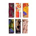 Wine Gift Bag 6ast Prints Paper 14 X 3.38 X 5.11 W/string Handle 150gm Upc/jhook