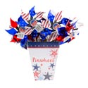 Pinwheel Patriotic 17in 2asst **red/blue-star/stripe Kd Disply 36pc Upc Tear Off Tag
