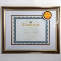 Photo Frame Document 11x14 Mattd 8.5x11 Mahogany W/gold Trim